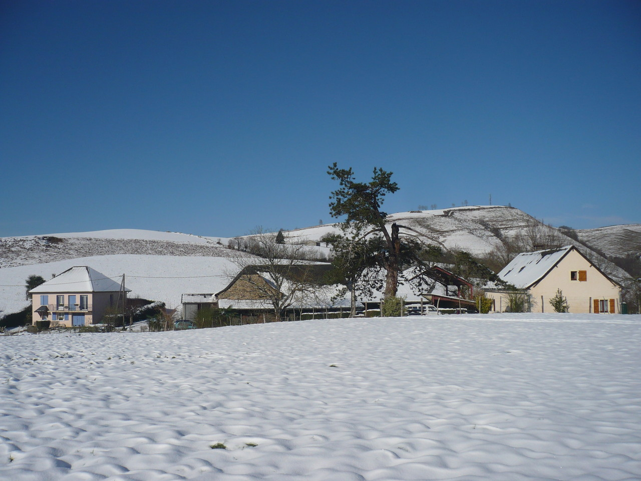 Pause hivernale sous la neige