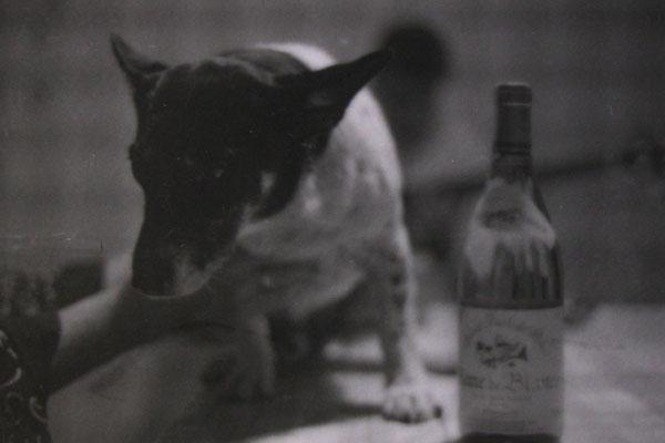 1989 - Quimperle