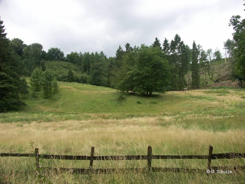 Ansicht aus Norden