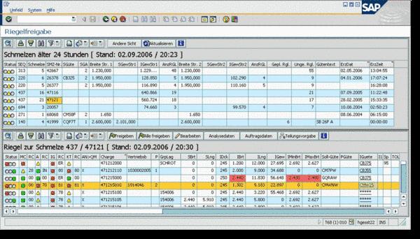 Gruppenspezifisch angepasste SAP Benutzeroberfläche