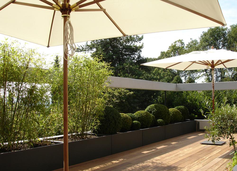 Eberhard_Gartenbau_Kloten, Holzdecks, Trogbepflanzung