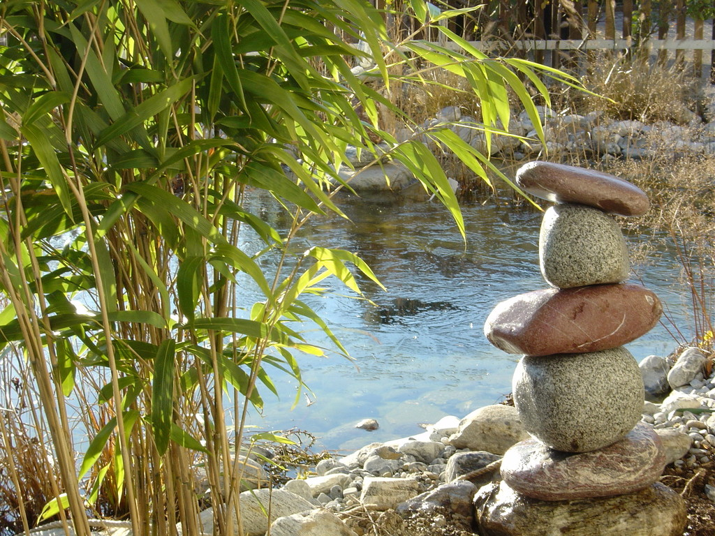 Eberhard_Gartenbau_Kloten, Biotope, Steine, Bambus