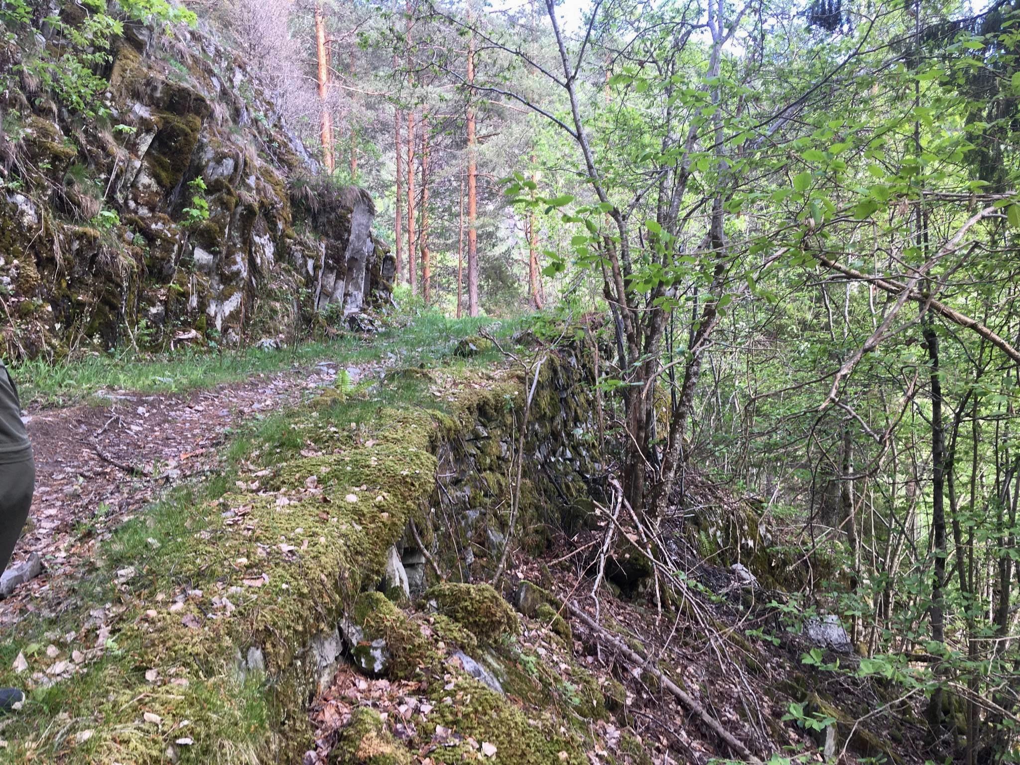 alte Wegmauer