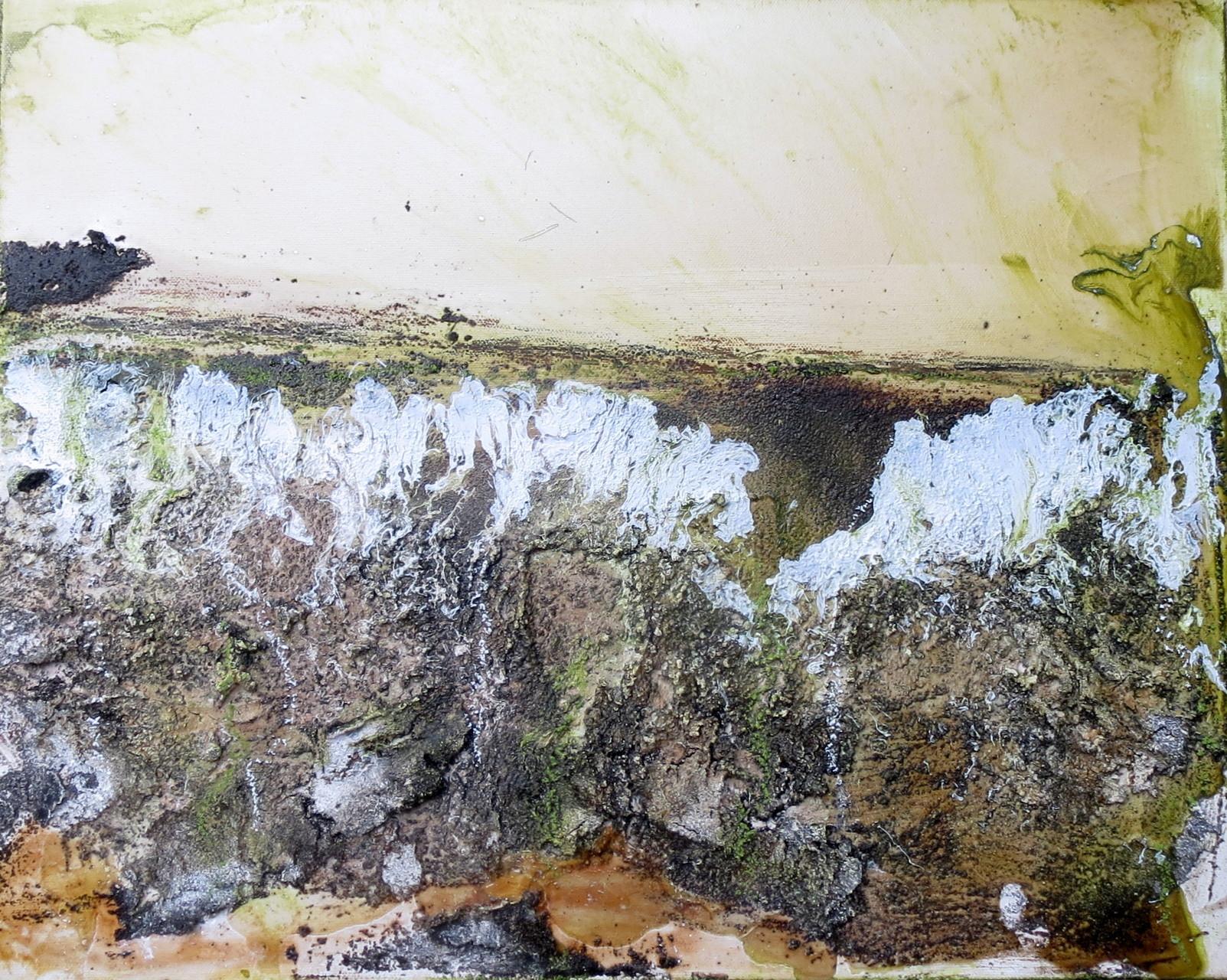 Steiniger Untergrund, 40cm x 50cm
