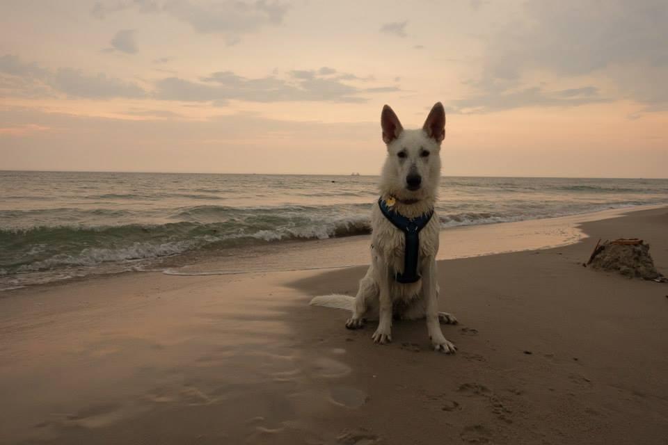 Ihr erster Urlaub am Meer