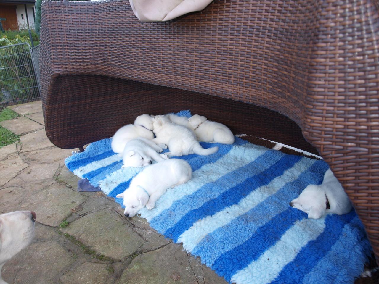 in der Höhle kann man gut schlafen