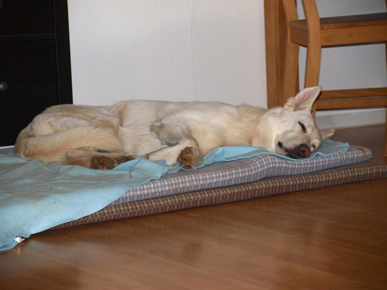 Gaia entspannt sich