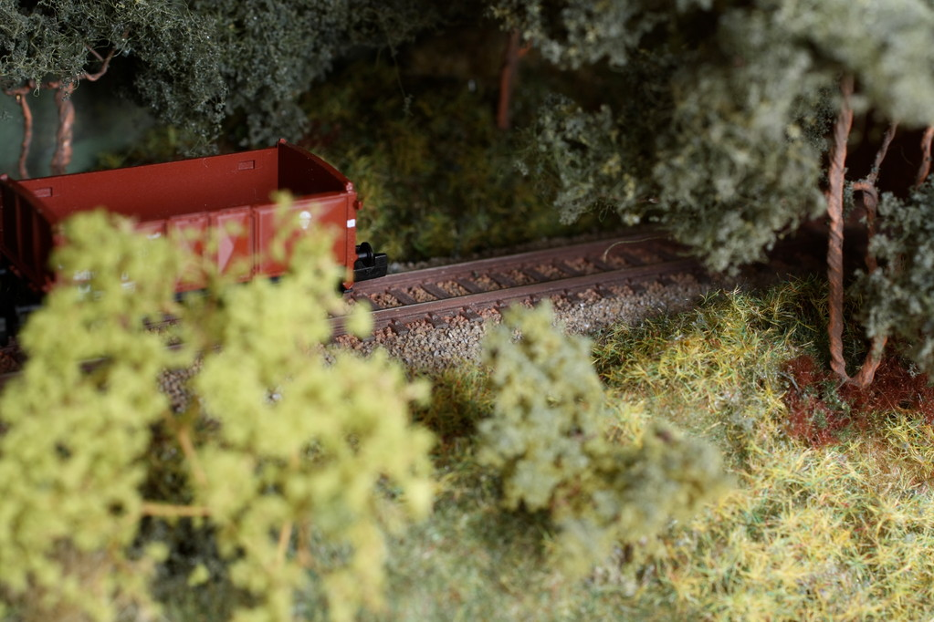Bäume überschatten den Schienenstrang am rechten Vitrinenrand