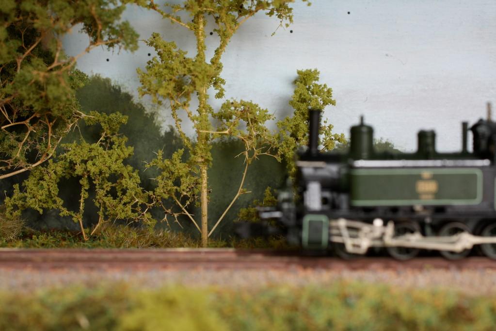 Zarte Vegetation zwischen Gleis und Hintergrund