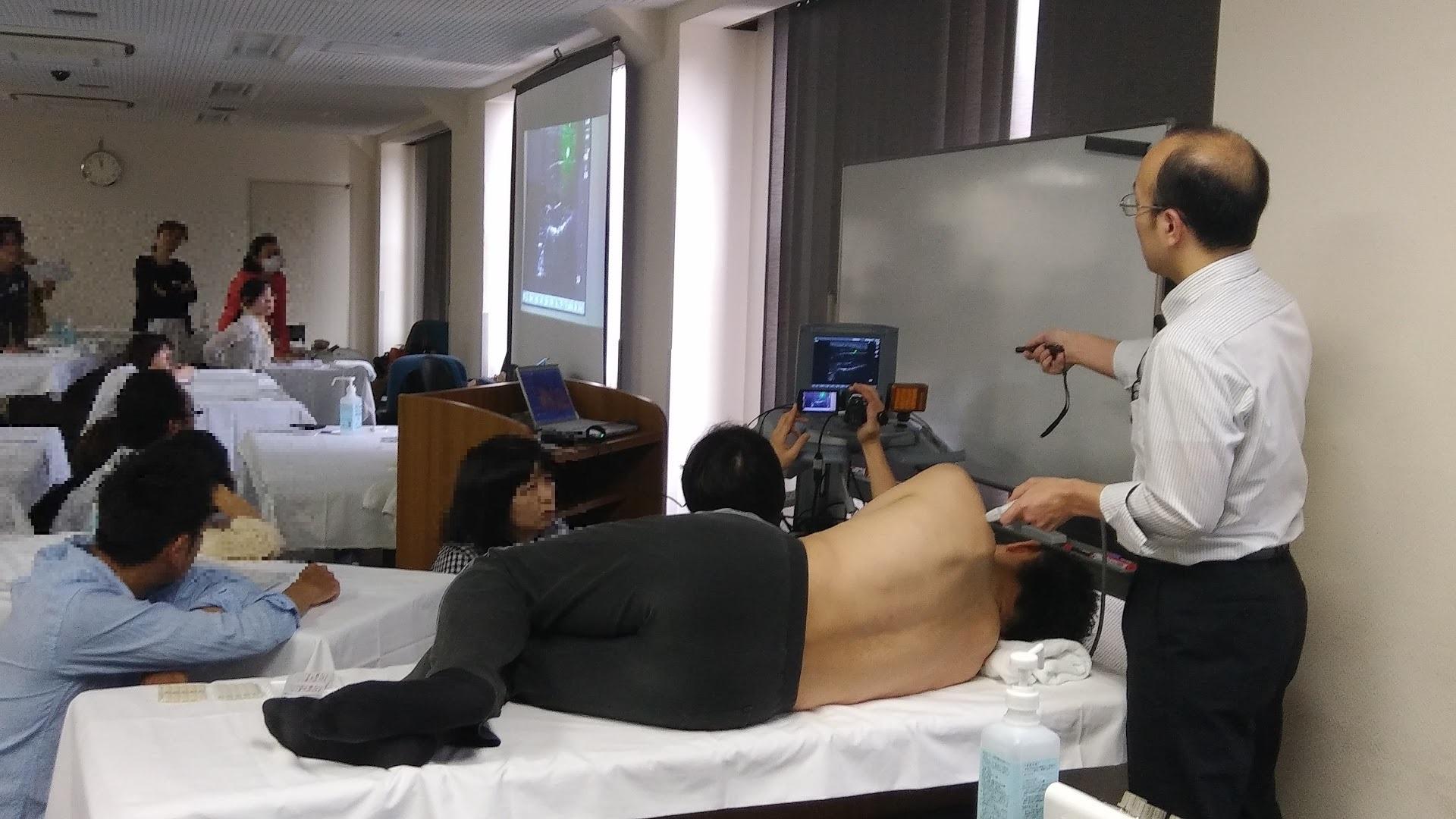 現代鍼灸実技(エコーを用いた筋肉、刺入深度の説明)