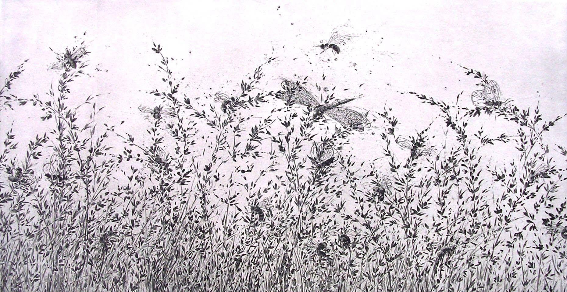 """""""Le chant des insectes"""""""