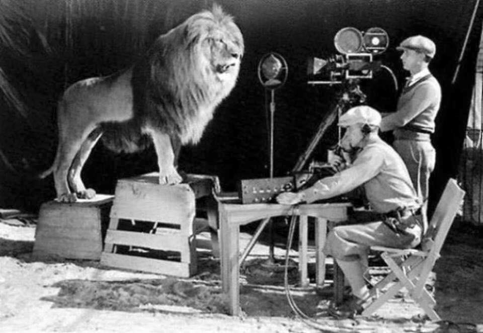 Filmando a Leo il leone per il logo di MGM