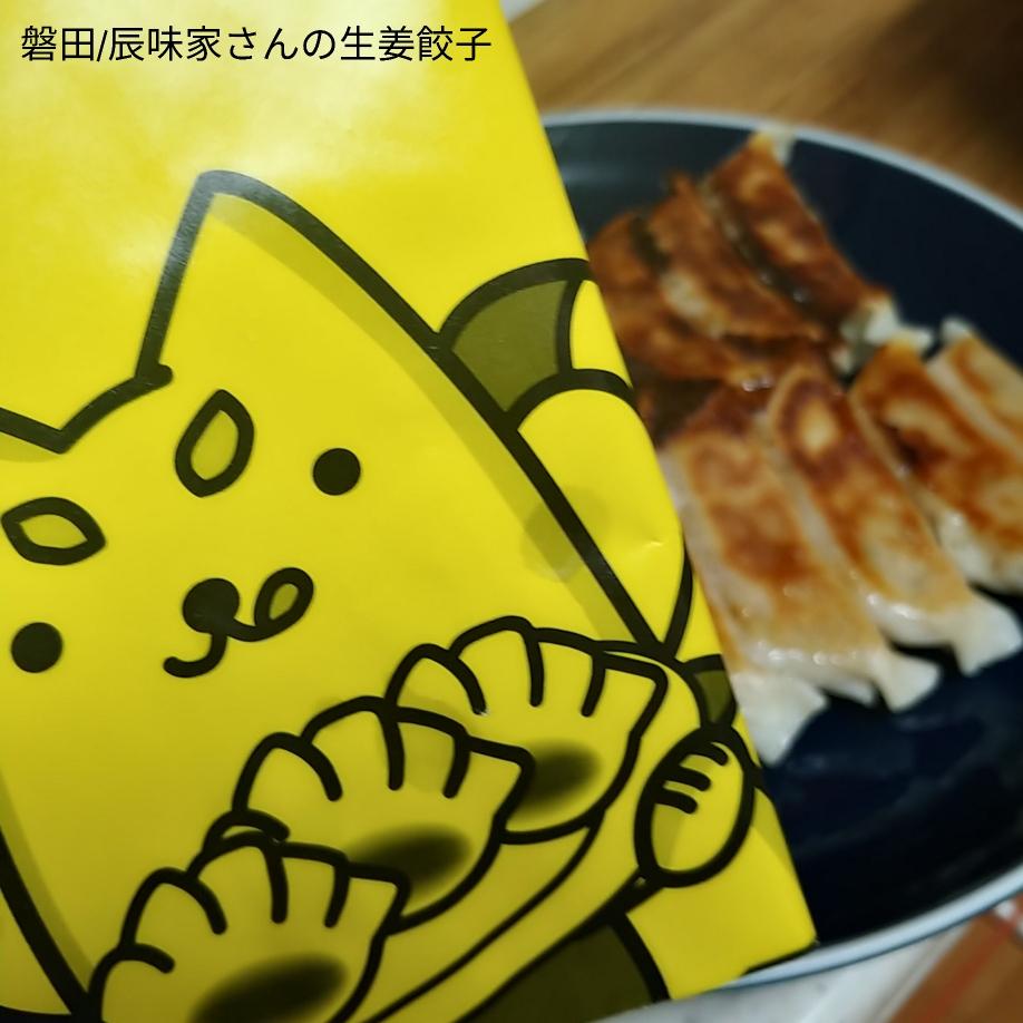 磐田/辰味家の生姜餃子 試してみた しっぺい君