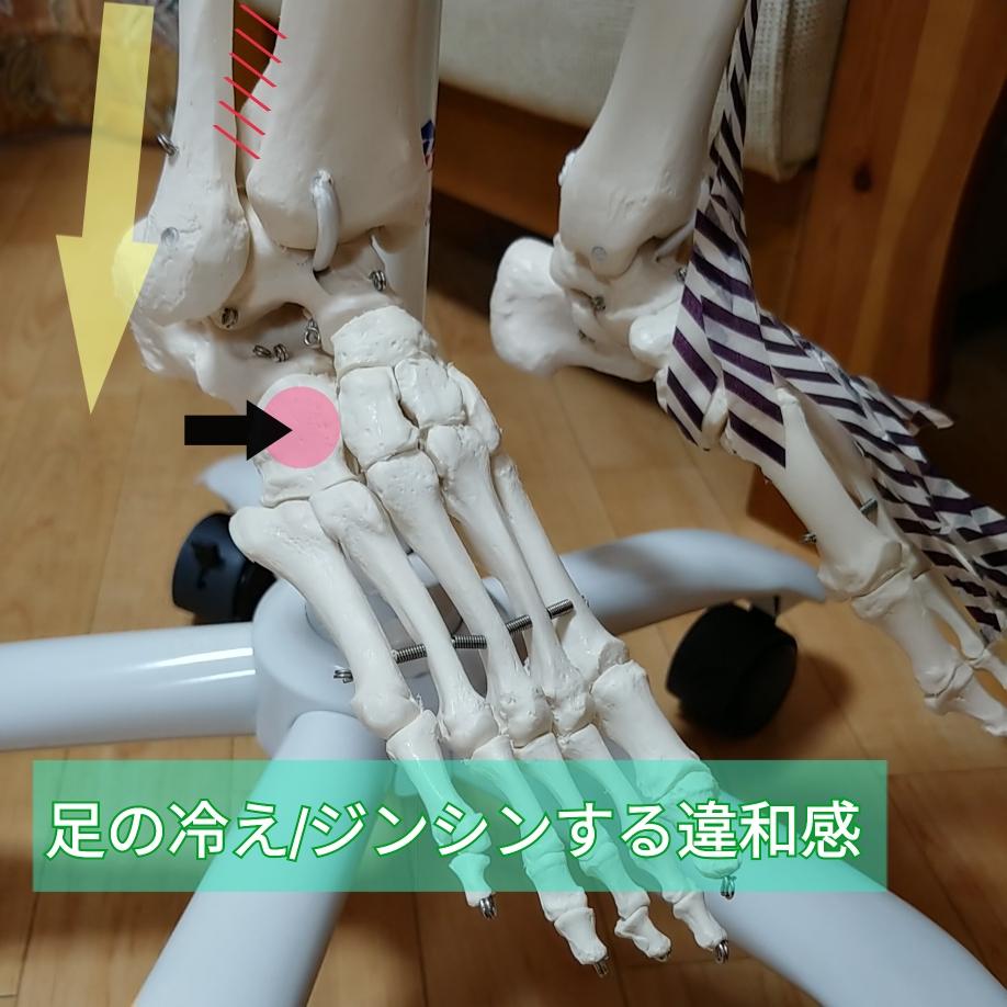 足根骨フットケア 足の冷え ムクミ改善