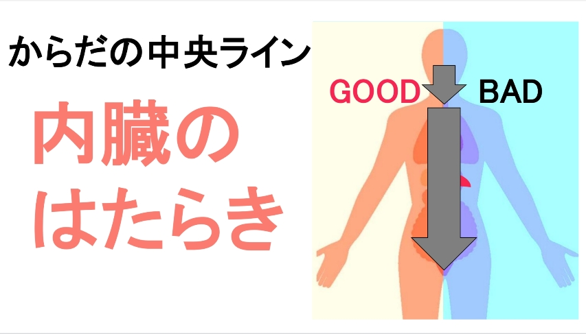 袋井エステ マリオネットライン シワ改善