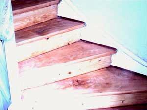 Treppe mit Ochsenblut komplett (Tritt- und Setzszufe) geschliffen und geölt.