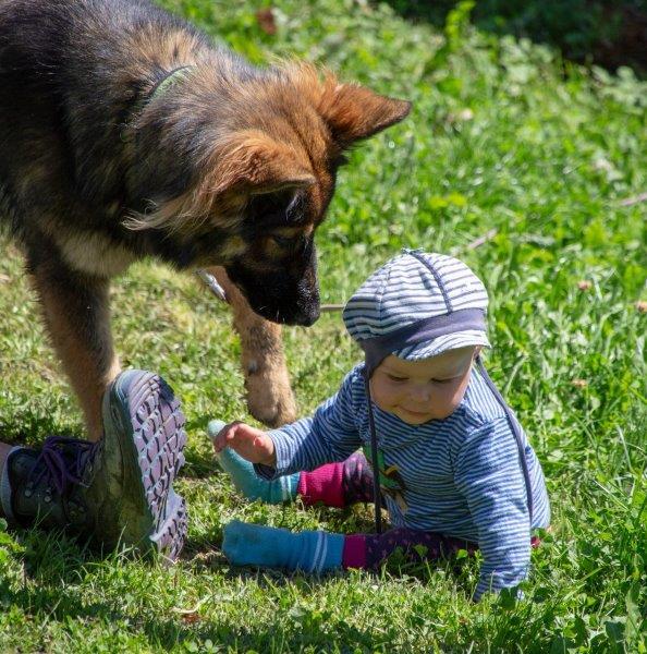 Nala ganz vorsichtig mit der Kleinen