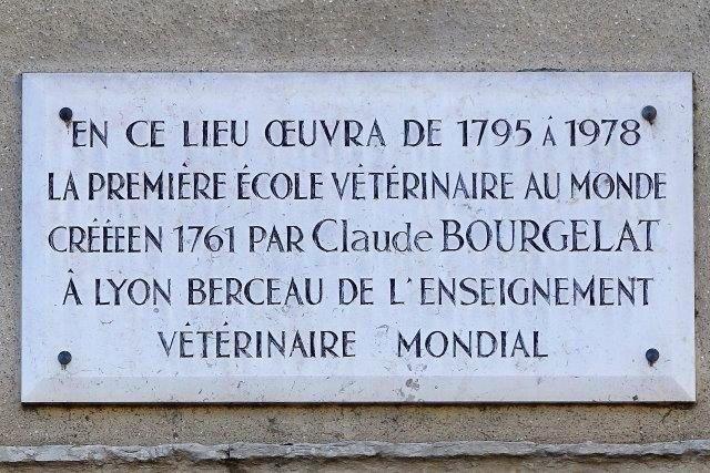 2 quai Chauveau Lyon 9ème