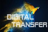 Digital druck, digitaltransfers,digital print