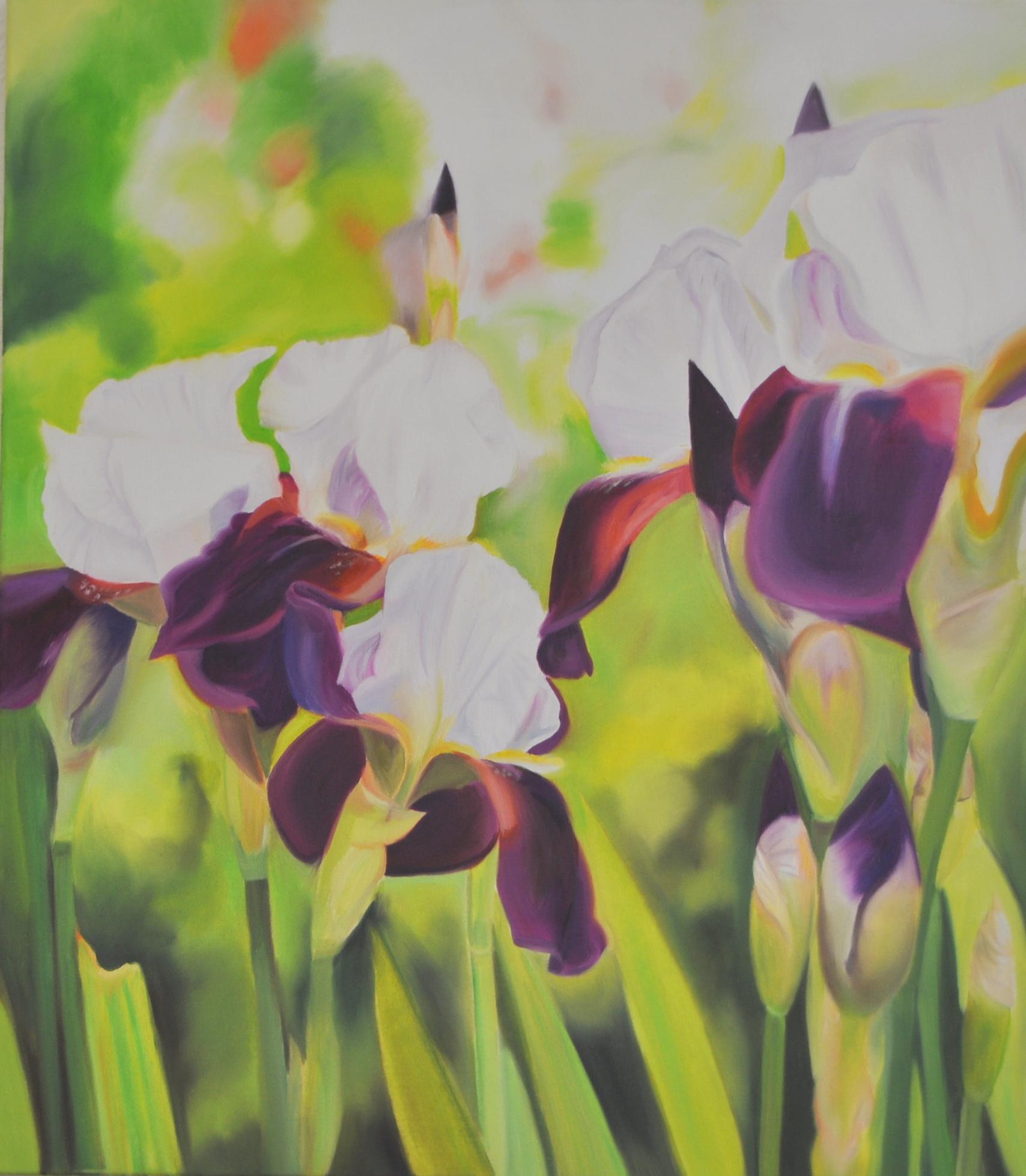 Iris, 80 x 70 cm