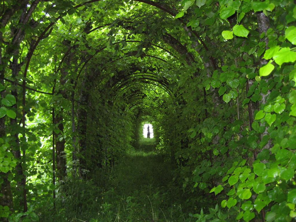 Laubengang bei Schloss Linderhof