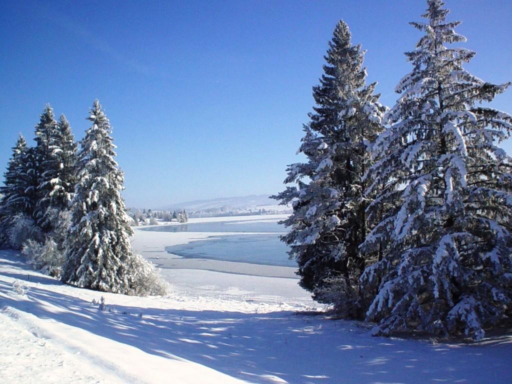 Wintertag am Lechseeufer