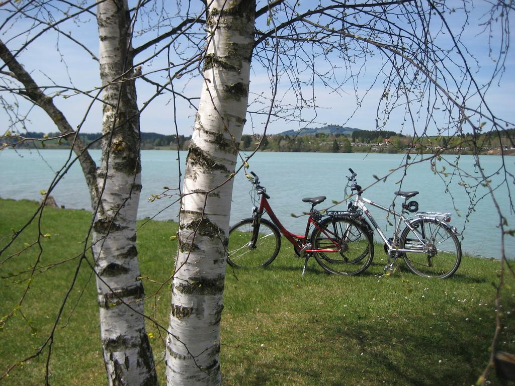 Radfahren am Lechsee