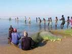 Industrielle Fischerei entzieht den Fischern die Grundlagen