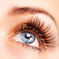 wimpernlifting lash lifting