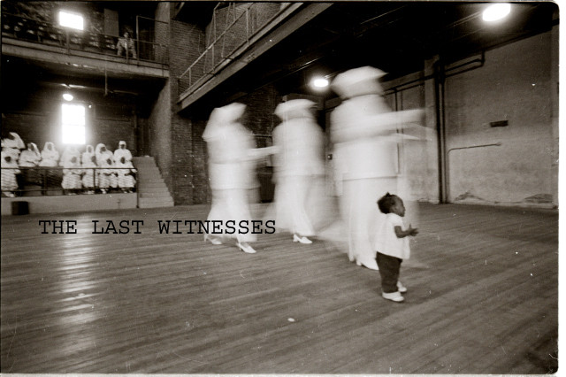 THE LAST WITNESSES