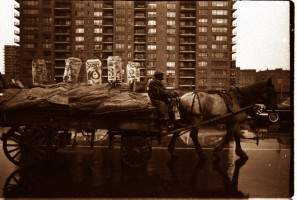 The Last Horse And Wagon Leaving Harlem, 1959