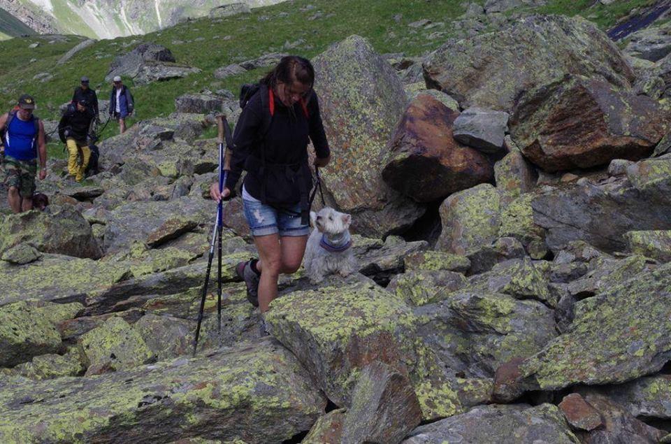 "Seminar "" Hund im Gebirge"""
