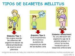diabetis tipus i metgedebellpuig jimdo page