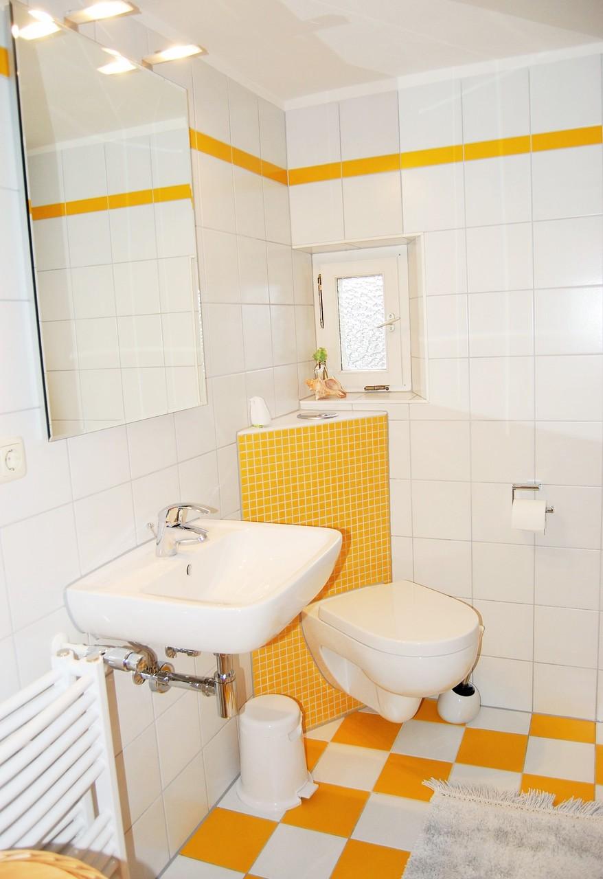 Waschbecken, WC, Dusche
