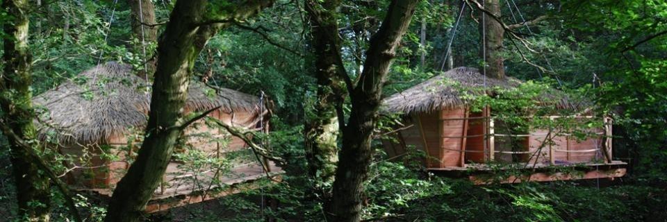 Cabane dans les arbres en Normandie