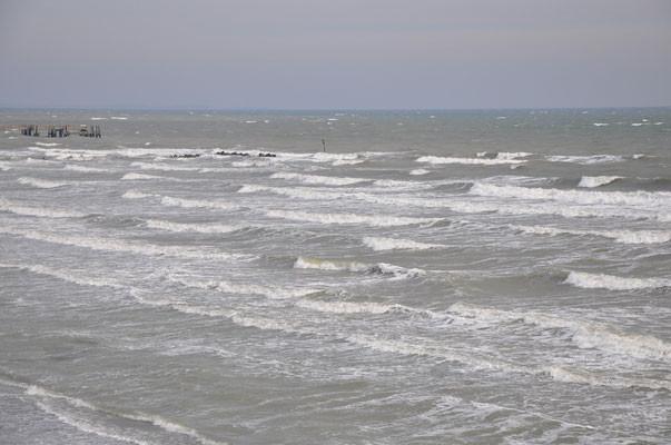 belles vagues