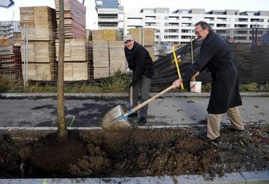 Wo man den ersten Laubholzbockkäfer entdeckt hatte, pflanzten Stadtrat Gfeller und Stadtgärtner Wieland eine Eiche.  (mad)