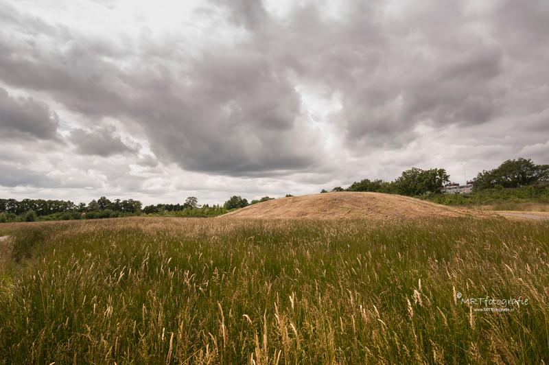 Natuurgebied De Schammer, te Leusden