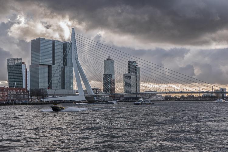 Erasmusbrug over de nieuwe Maas