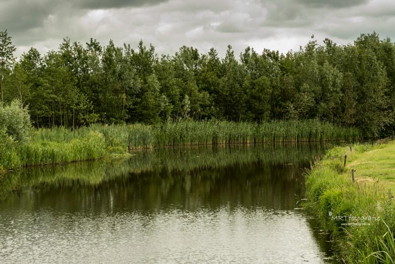 Reflecties van het riet in het water Natuurgebied De Schammer, Leusden