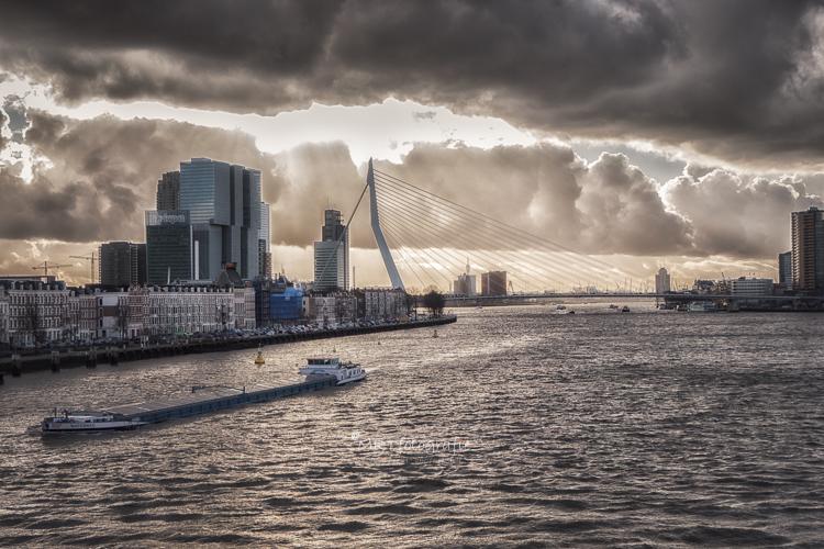Zicht over de Nieuwe Maas te Rotterdam met de Erasmusbrug aan de horizon. Architectuurfotografie, Stadgezichten