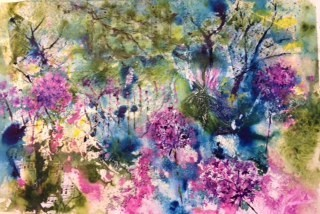 Pat Booth 'The colours of my garden'
