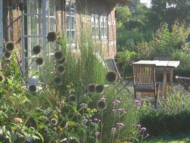 Naturgarten mit ökologischer Ferienwohnung, Yoga und Makrobiotik Workshop für Gäste