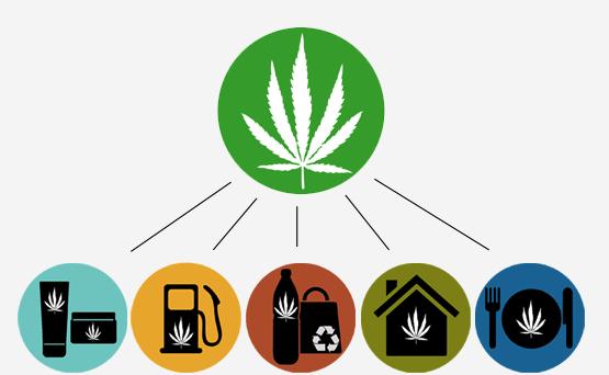 Alcuni possibili utilizzi della Cannabis nella vita quotidiana di tutti (cinque esempi)