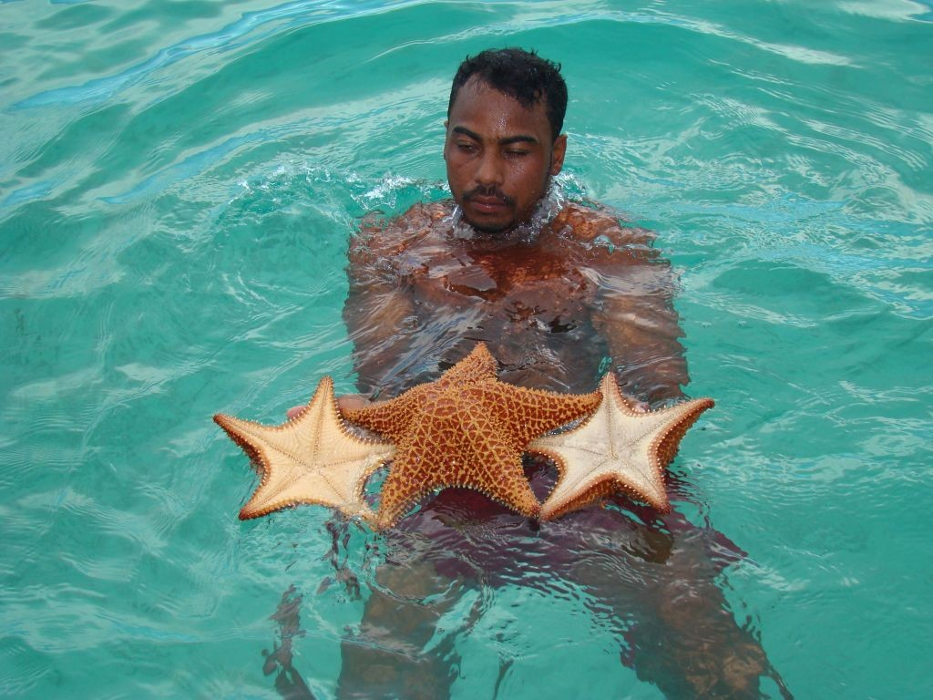 Singleurlaub Karibik