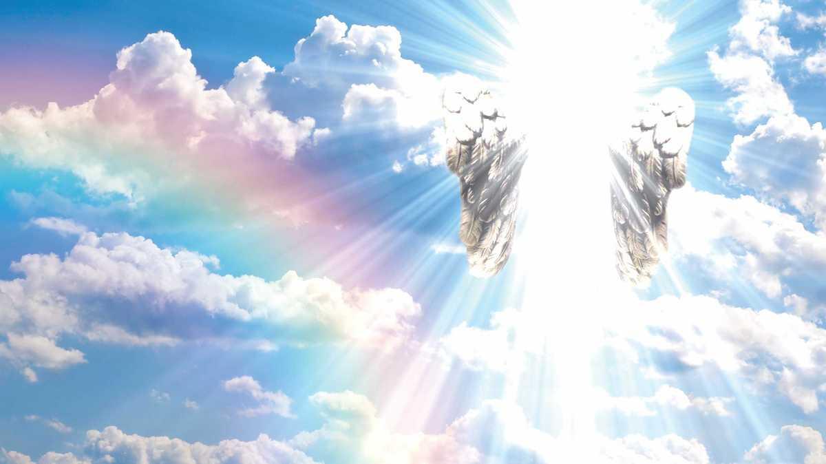 Curso De Terapia De Sanación Angélica Página Web De