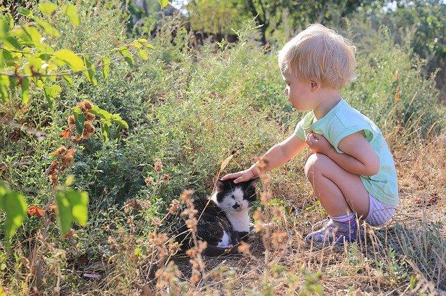 Entspannter Urlaub im Sauerland mit Kleinkind