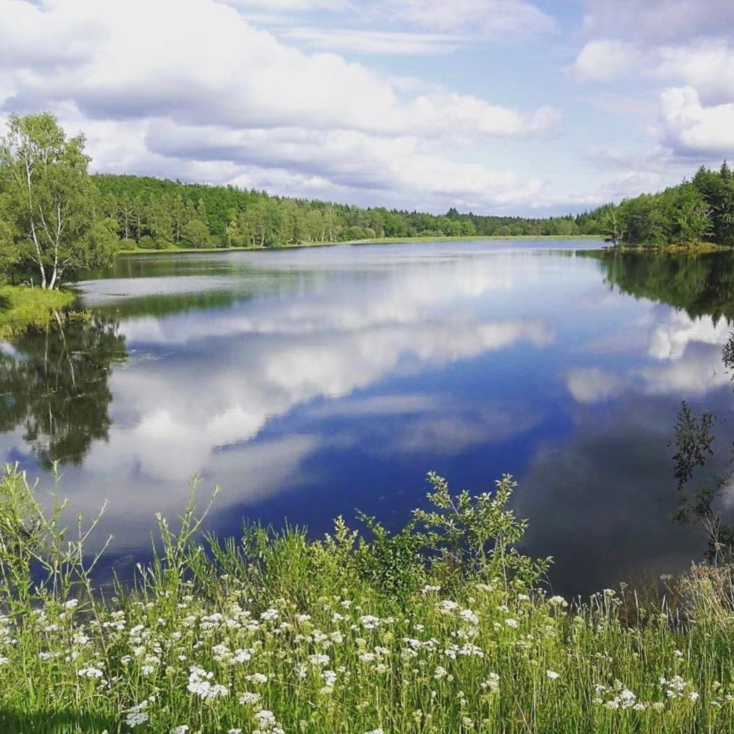 étang de La Prade