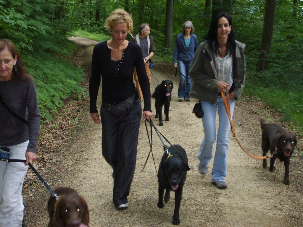Spaziergang zur nächsten Aufgabe