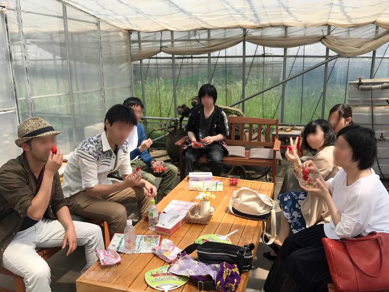 休憩しながら摘んできたいちごを食べました(^-^)